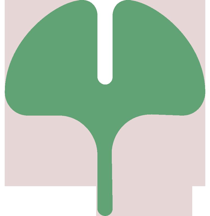 Ginkoblatt Grün